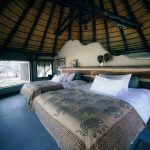 Okonjima Lodge Namibia