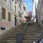 A Vida Portuguesa Lisbon