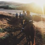 Eldhestar Horse Riding Tours