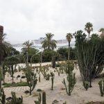 Montjuïc Cacti Park