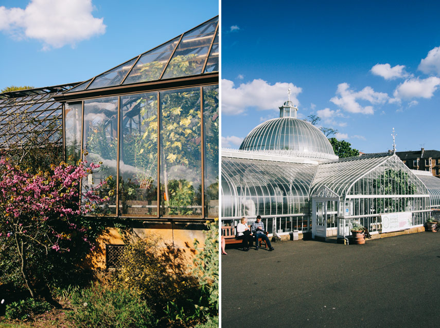 ... Glasgow Botanic Gardens ...
