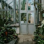 De Plantentuin antwerp belgium