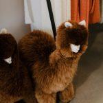 LN|KNITS antwerp wool shop